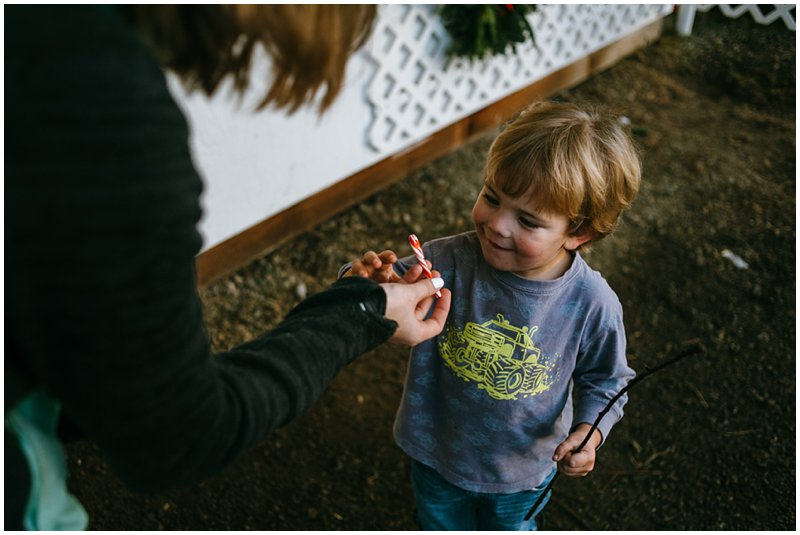 Tacoma Lifestyle Christmas Tree farm photos